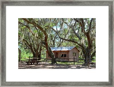 Live Oak Cabin Framed Print by Bob Jackson