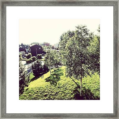 #liverpool #uk #england #green #tree Framed Print