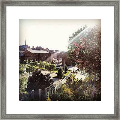 #liverpool #uk #england #tree #house Framed Print by Abdelrahman Alawwad