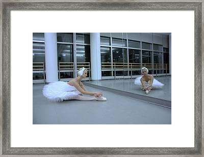 Living A Dream  Framed Print by Wendy Potocki