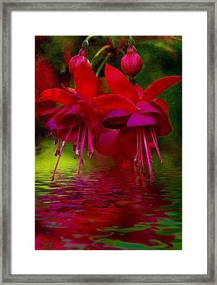 Living Bells Framed Print by Heather Thorning