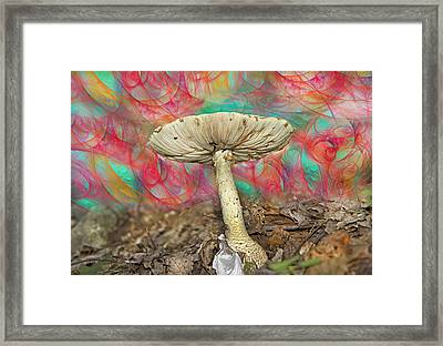Living Myth  Framed Print by Betsy Knapp