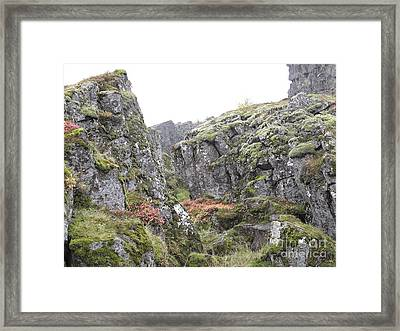 Framed Print featuring the photograph Living Stone   by Louise Peardon