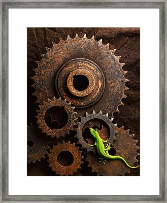 Lizard On Gears Framed Print by John Wong