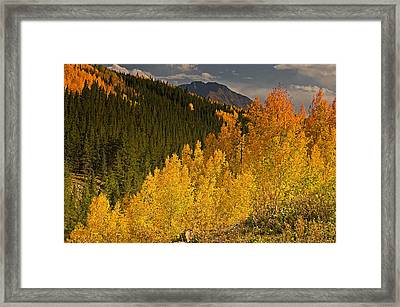Lizzard Head From Lost Dollar Road Framed Print