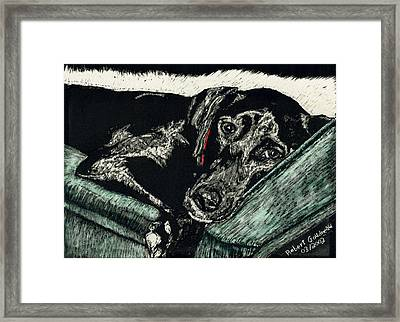Lizzie The Dog Framed Print by Robert Goudreau
