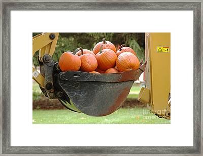Load Of Pumpkins Framed Print by Ginger Harris