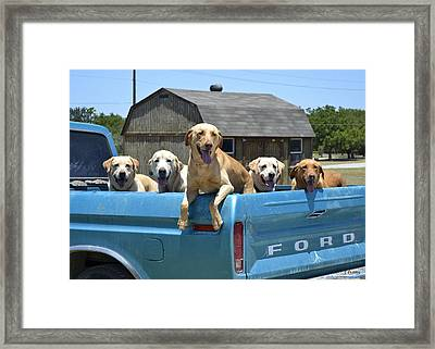 Load Up Framed Print