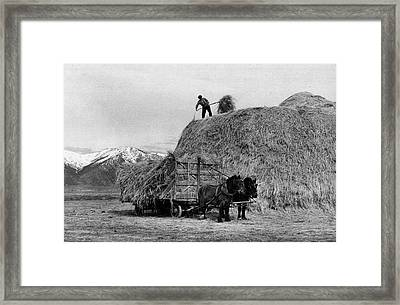 Loading Hay Framed Print by Arthur Rothstein
