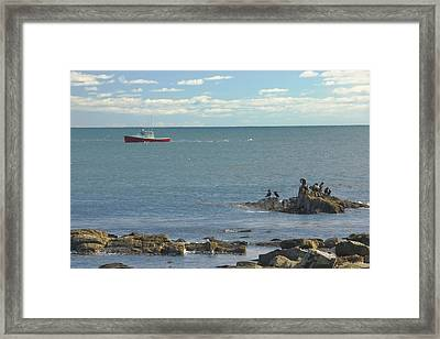 Lobster Boat Working Off Rocky Seawall Beach Acadi National Park Photo Framed Print