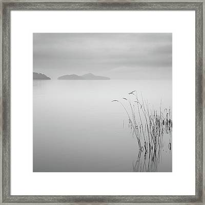 Loch Lomond Grass Framed Print by Billy Currie Photography