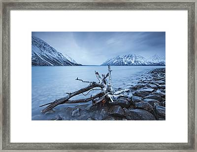Log Along The Shores Of Kathleen Lake Framed Print by Robert Postma