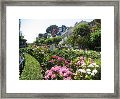 Framed Print featuring the photograph Lombard Street by Dany Lison