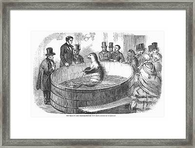 London: Talking Fish, 1859 Framed Print by Granger