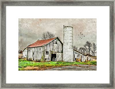 Framed Print featuring the photograph Lone Barn by Mary Timman