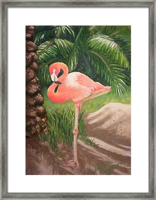 Lone Flamingo Framed Print