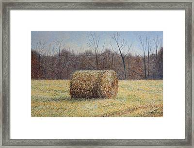 Lone Haybale Framed Print by Patsy Sharpe