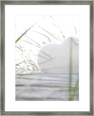 Lone Heart Framed Print by Laurence Oliver