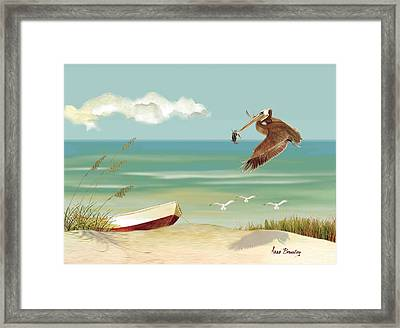 Lone Pelican Framed Print by Anne Beverley-Stamps