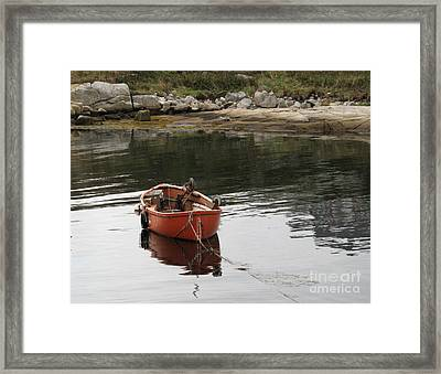Lone Red Framed Print by Louise Peardon