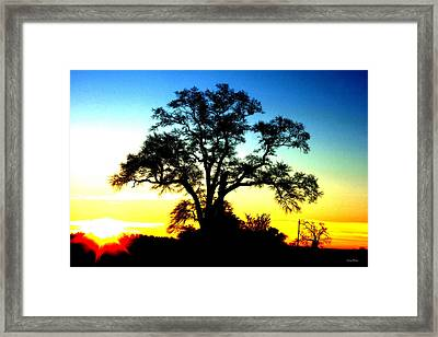 Framed Print featuring the photograph Lone Tree At Sunrise by George Bostian