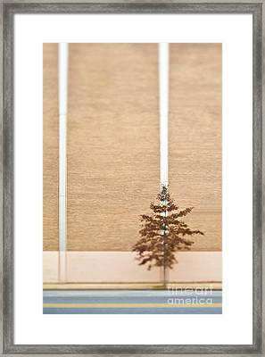 Lone Tree Next To A Building Framed Print