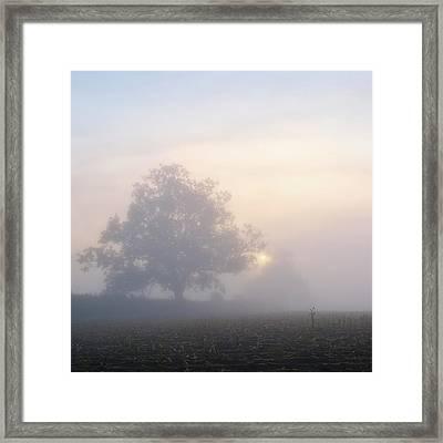 Lone Tree Framed Print by Paul Simon Wheeler Photography