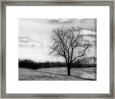 Loneliness Framed Print by Trudy Wilkerson