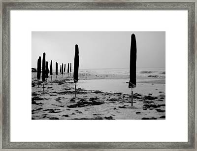 Lonely Beach Framed Print by Toni Hopper