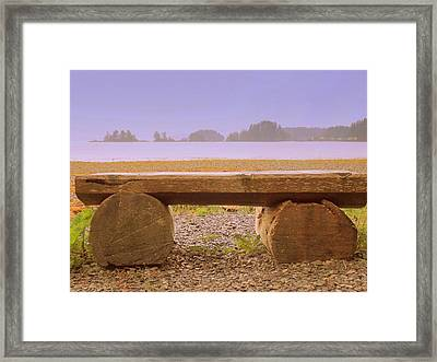 Lonely Bench Framed Print by Randall Weidner