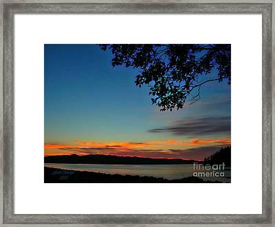Lonely Night Framed Print
