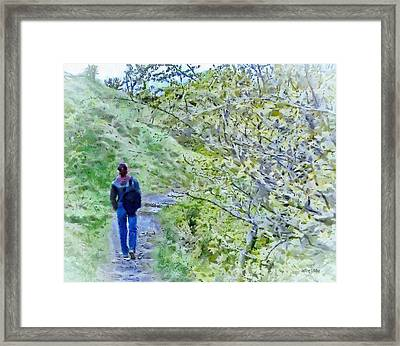 Lonely Path Framed Print by Jeff Kolker