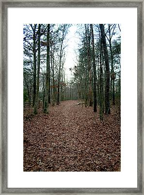 Lonely Path Framed Print