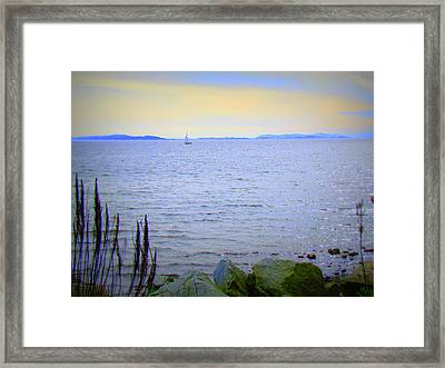 Lonely Sailboat II Framed Print