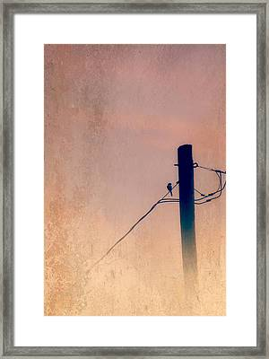 Lonely Soldier Framed Print by Susan Bordelon