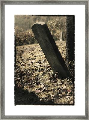 Lonely Stone Framed Print by Mark Wagoner