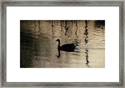 Framed Print featuring the photograph Lonely by Vilas Malankar