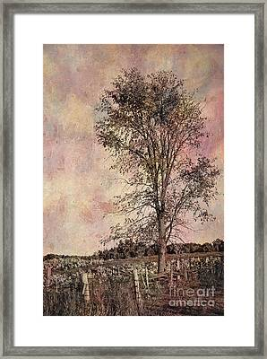 Lonesome Beauty Framed Print by Aimelle
