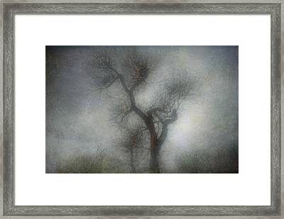 Lonesome Framed Print by Diane Dugas