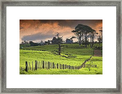 Long Bay Fields Framed Print by Mark Meredith