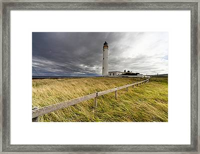 Long Grass Blowing In The Wind Framed Print by John Short