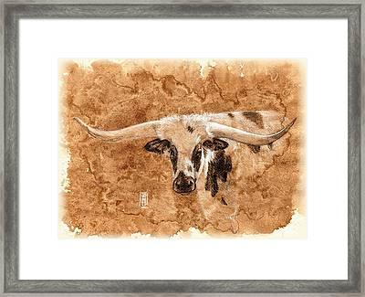 Long Horns Framed Print by Debra Jones