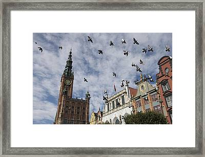 Long Market With Pigeons, Town Hall Framed Print by Keenpress