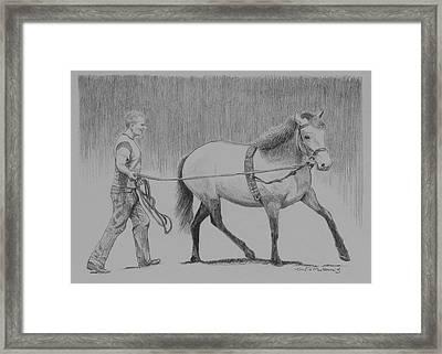 Long Reins Mallard Framed Print by Tomas OMaoldomhnaigh