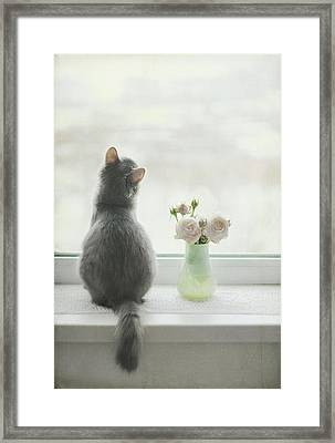Longing For Spring Framed Print by Have A Good Day!