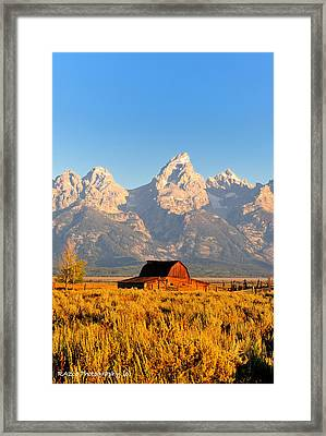 Lonley Barn Framed Print by Rusty Enderle