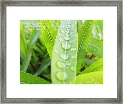 Look Deep Into Nature Framed Print