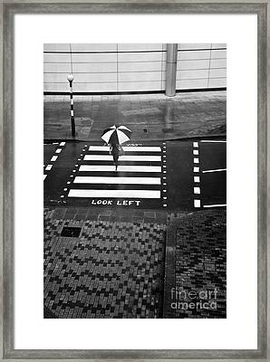 Look Left Framed Print by Linda Wisdom