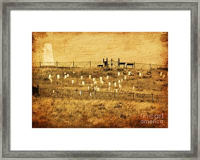 Looking At History Framed Print by Terrie Taylor