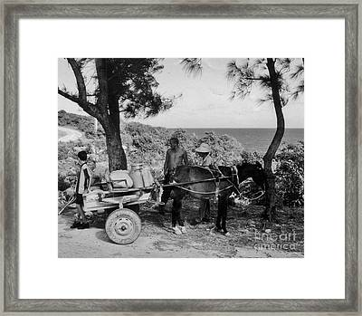 Looking Back Framed Print by John Malone